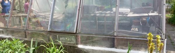 Gewächshaus im Schulgarten